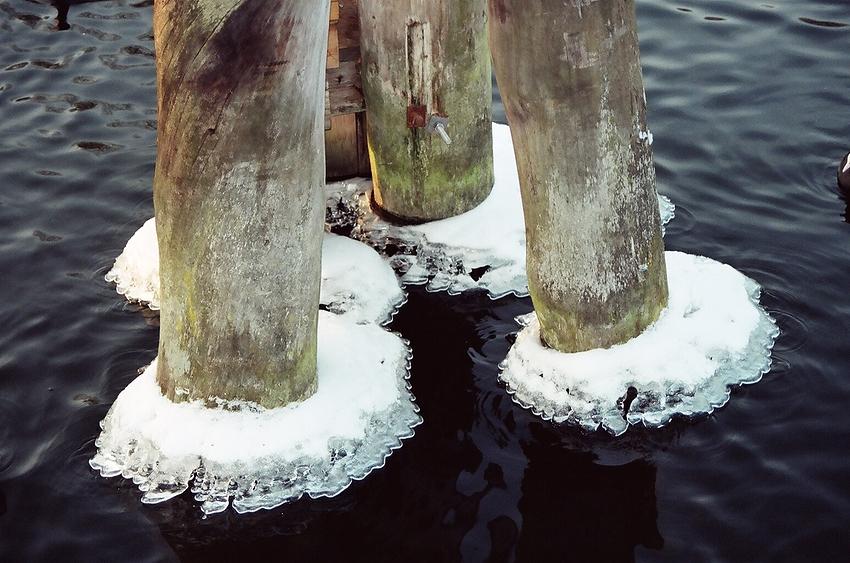 gefrorene Gemeinschaft