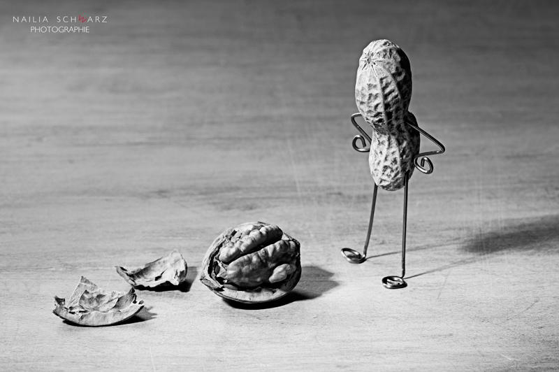 Gefundener Verstand