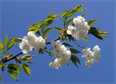 Gegen die Frühjahrsmüdigkeit...