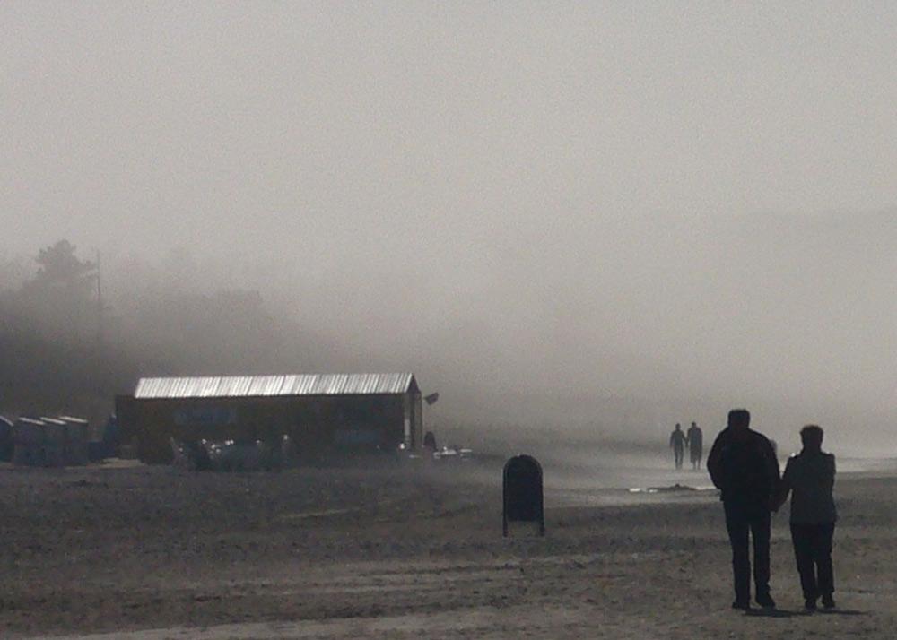 Gegenlicht - Brouillard côtier