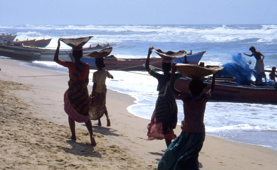 Gegenlichtaufnahme am Strand von Puri