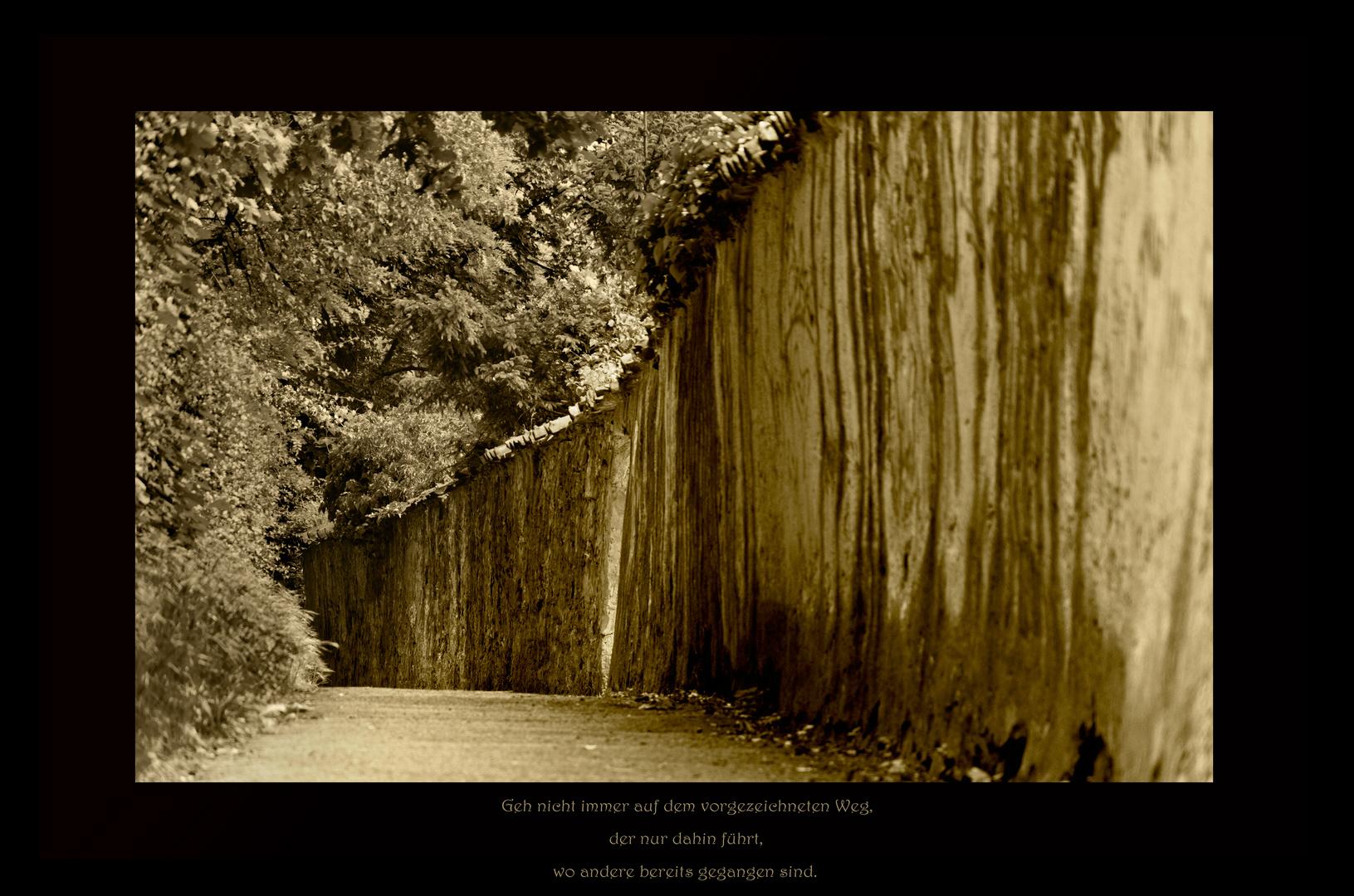 Geh nicht immer auf dem vorgezeichneten Weg, der nur dahin führt, wo andere bereits gegangen sind.