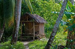 Geheimes Regenwald Häuschen