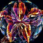 Geheimnis einer Kristallkugel