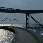 Gehen, Fliegen, Segeln ... - ... am und übers Wasser ... - Träume des Menschen