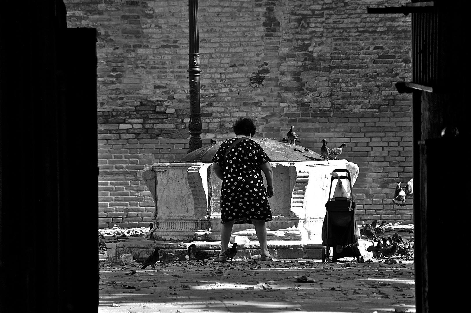 gehn ma tauberlvergiften im park ;-), venedig im august 2011