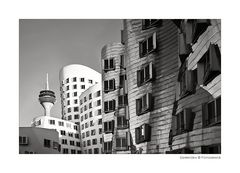 ~ Gehry 3 ~