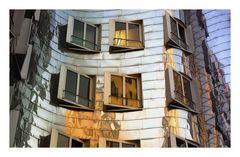 Gehry Ausschnitt