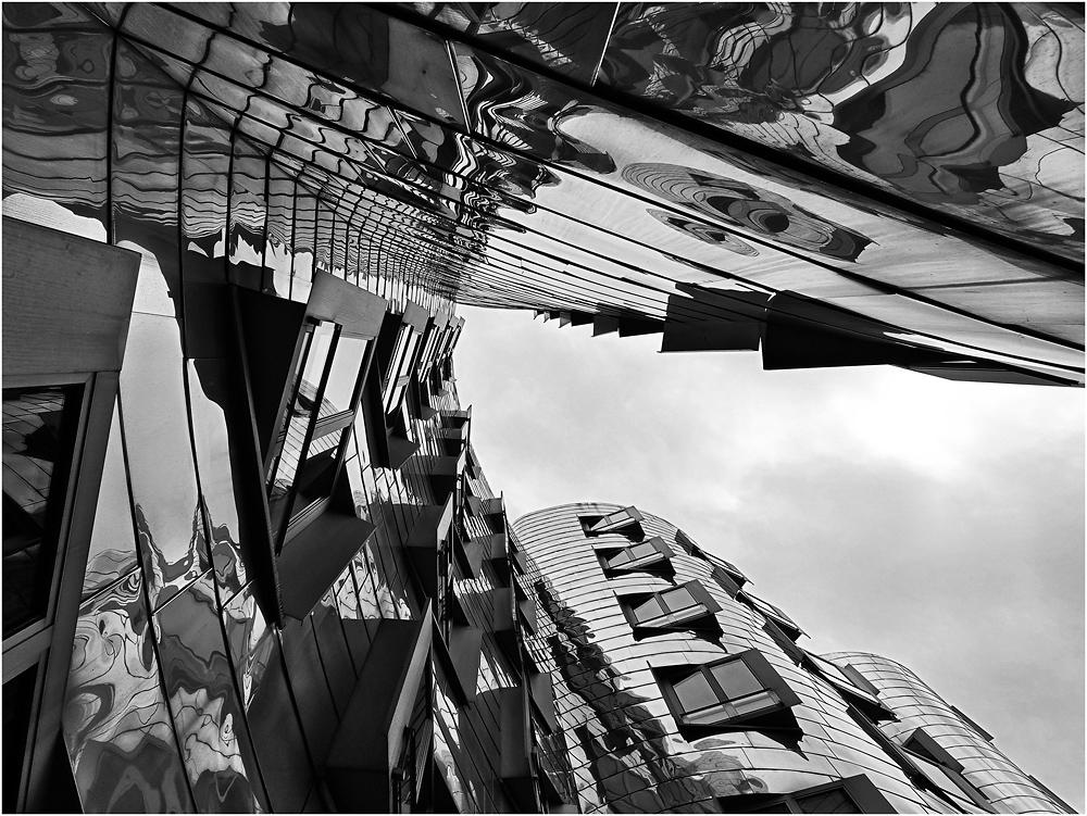 """"""" Gehry Froschperspektive """""""