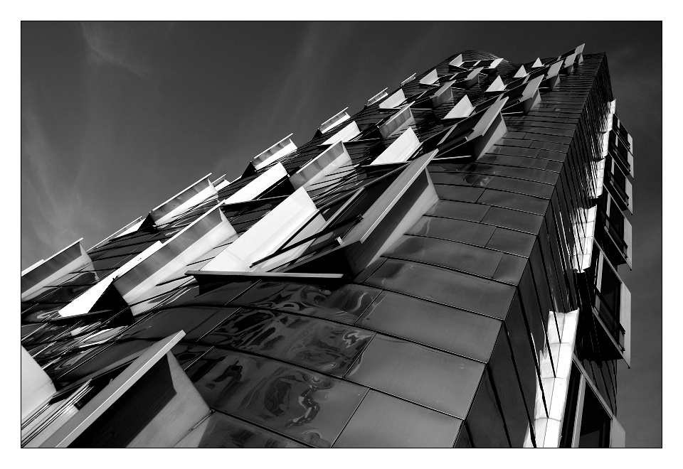 Gehry Haus #9