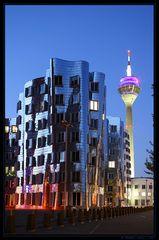 Gehry nights