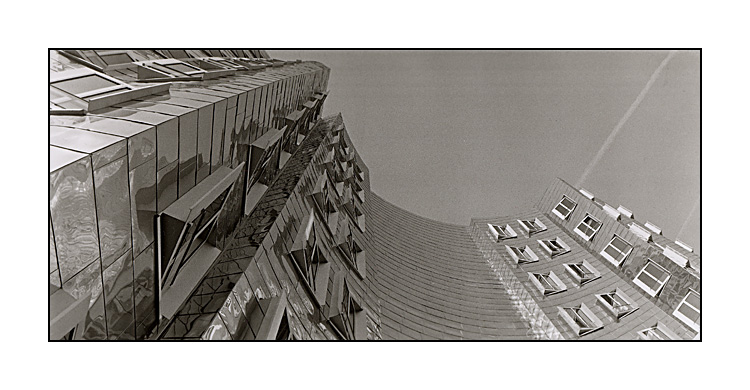 Gehry Panorama 2
