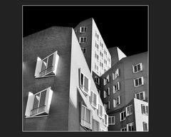 Gehryziegel