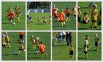 Gehversuche von Fußballzwergen II.