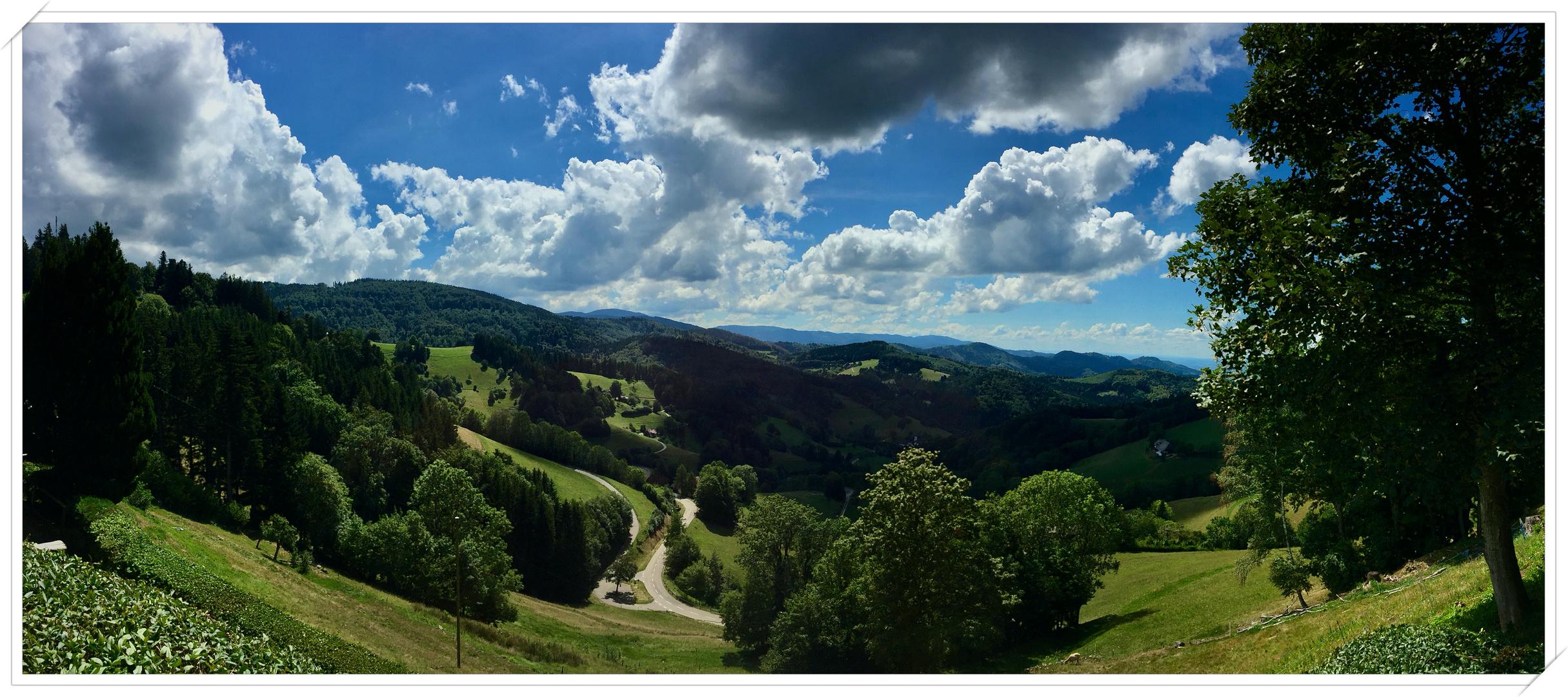 Geiernest Richtung St. Ulrich