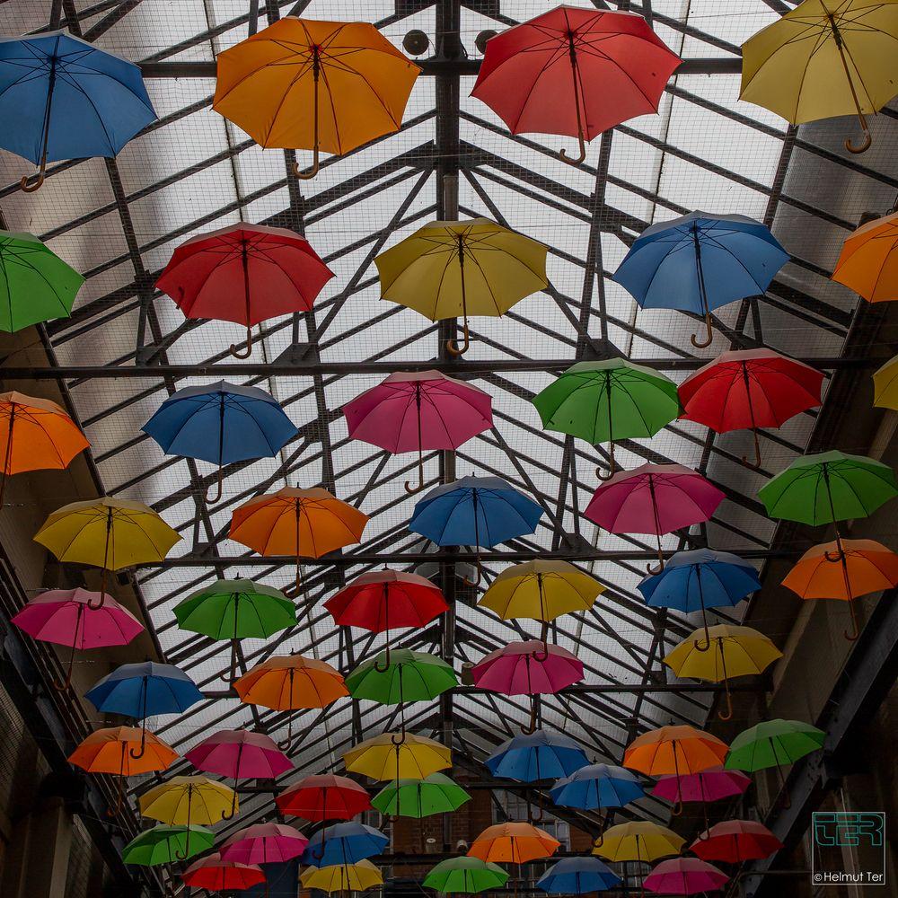 Geigen sind aus.  -  Der Himmel hängt voller Schirme
