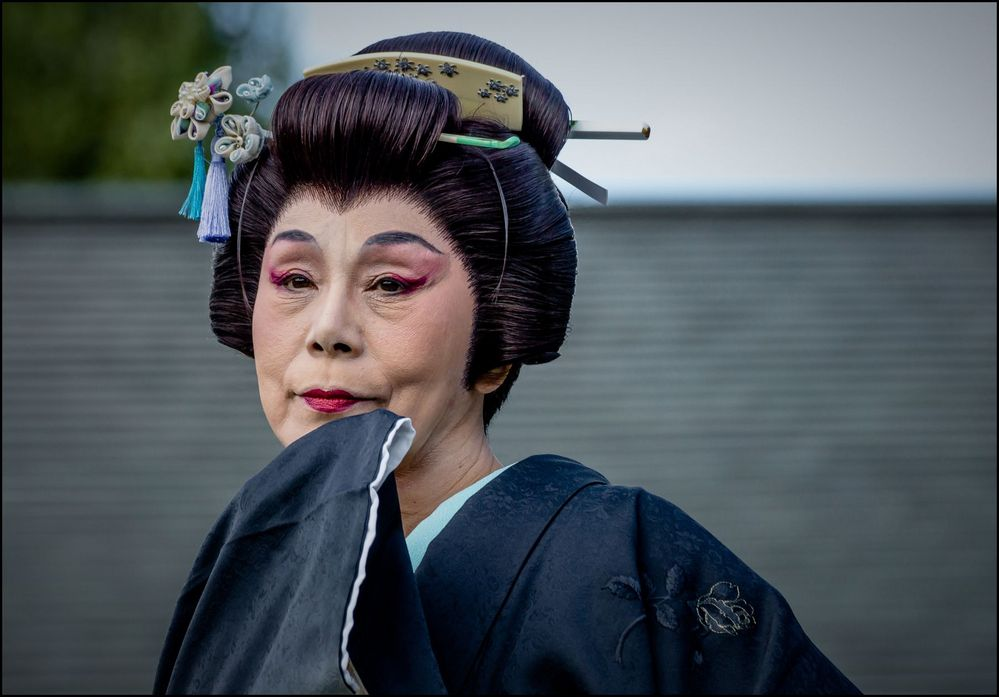 Geisha, Person of the Arts II