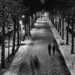 Geister der Nacht