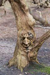 Geisterbaum 2