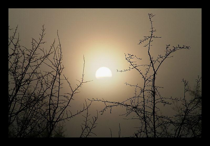 Geisterhafter Sonnenaufgang I