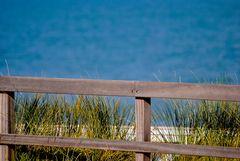Geländer zum Meer