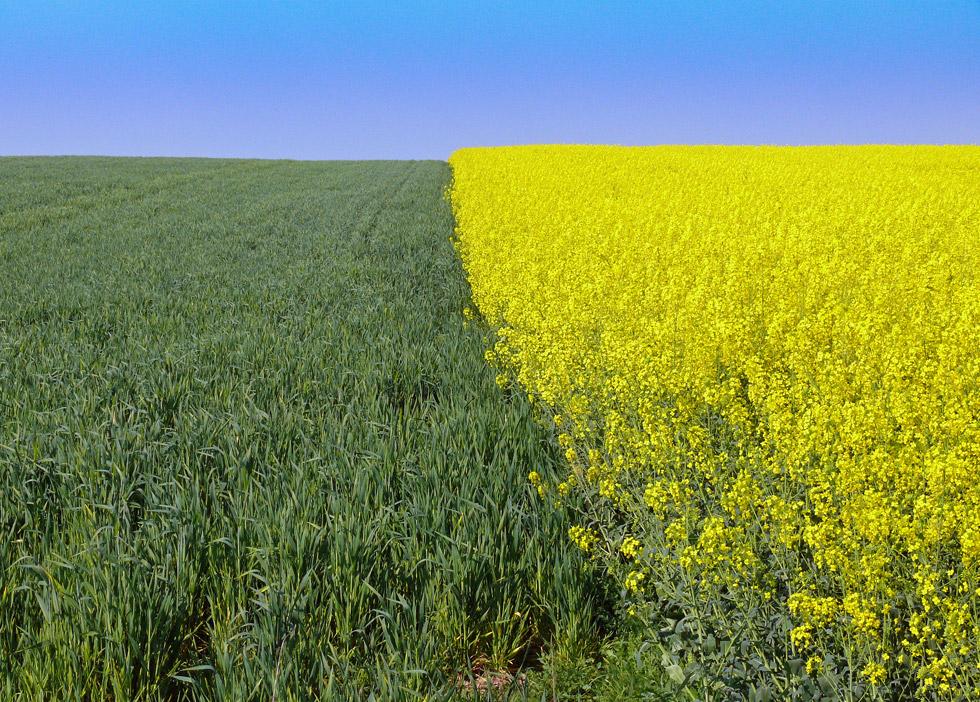 Gelb, Grün und Blau