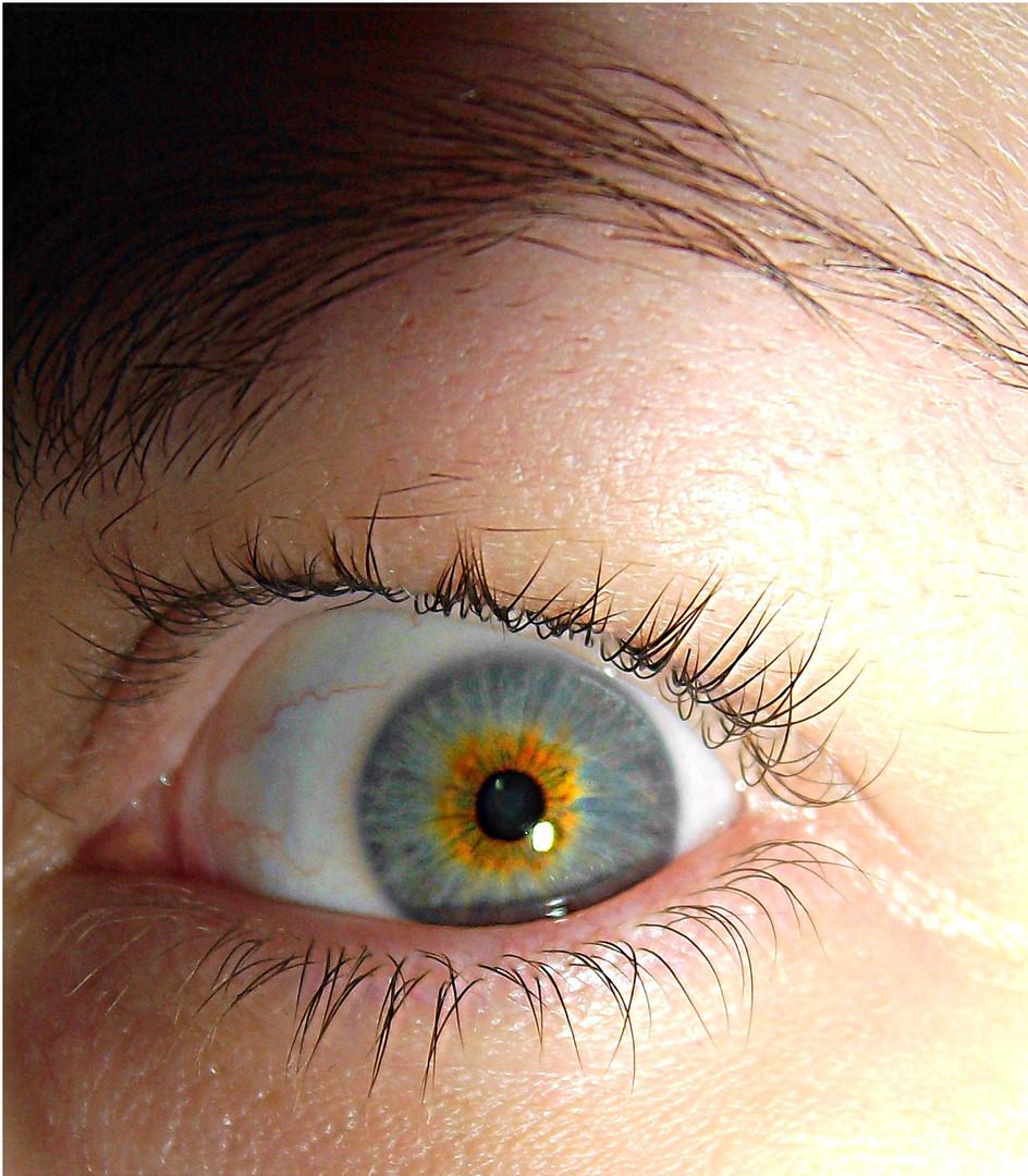 gelb in grau foto bild fotos von teilen des gesichts k rperdetails augen bilder auf. Black Bedroom Furniture Sets. Home Design Ideas