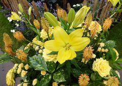 gelbe Lilie zwischen Rosen u.a. Blüten