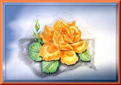 Gelbe Rose.....