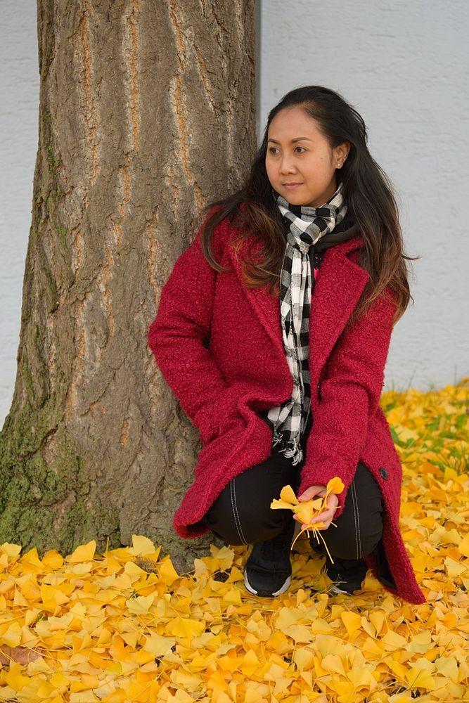 gelber Gingko-Herbst