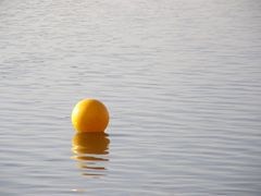 Gelber Wasserball