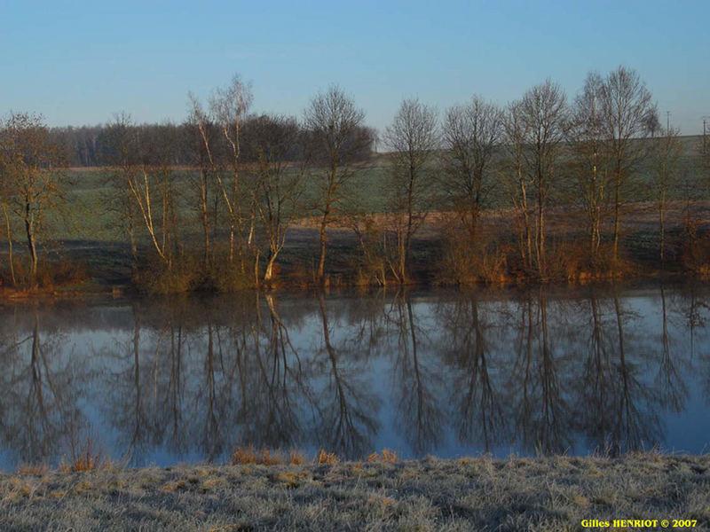 Gelée étang de l'abbaye