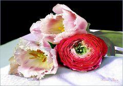 Geliebte Blumen.