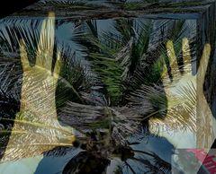 gelöst:LEER LA PALMA DE LA MANO /Handlesen / palm reading/RÄTSEL/Quer Gedacht