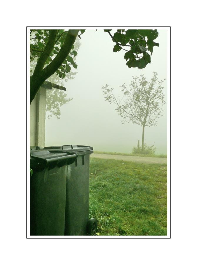 Gelungenes Foto von zwei Mülltonnen im Hochnebel (07.10.07, neun Uhr zwei-und-dreizig)