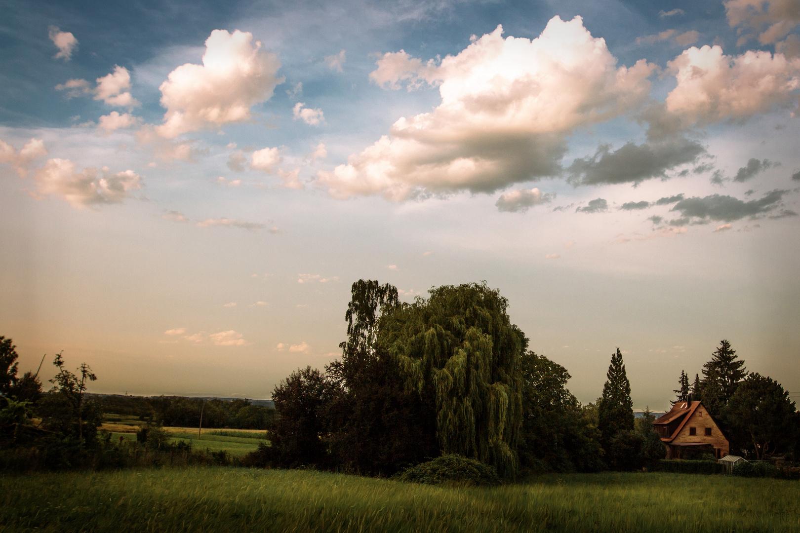 Gemalte Landschaft