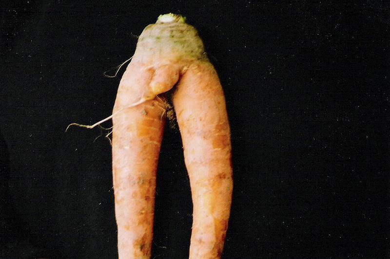 Gemüseporno