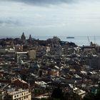 Genova e i suoi tetti
