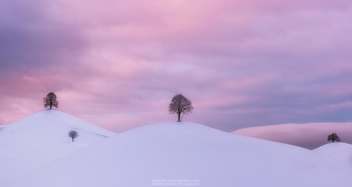 Gentle Hills