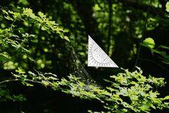 Geo-Dreieck-Form...
