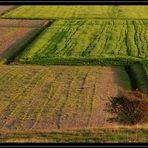 Geometrie rurali