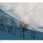 ...geometrie...invernali...