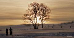 Gerade noch vor Sonnenuntergang ...