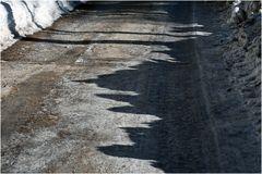 Geräumter Weg im Kaisertal mit Schatten-Bergen