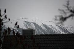 Gerippe vom Weihnachtsbaum auf verschneitem Kaliberg in Bokeloh