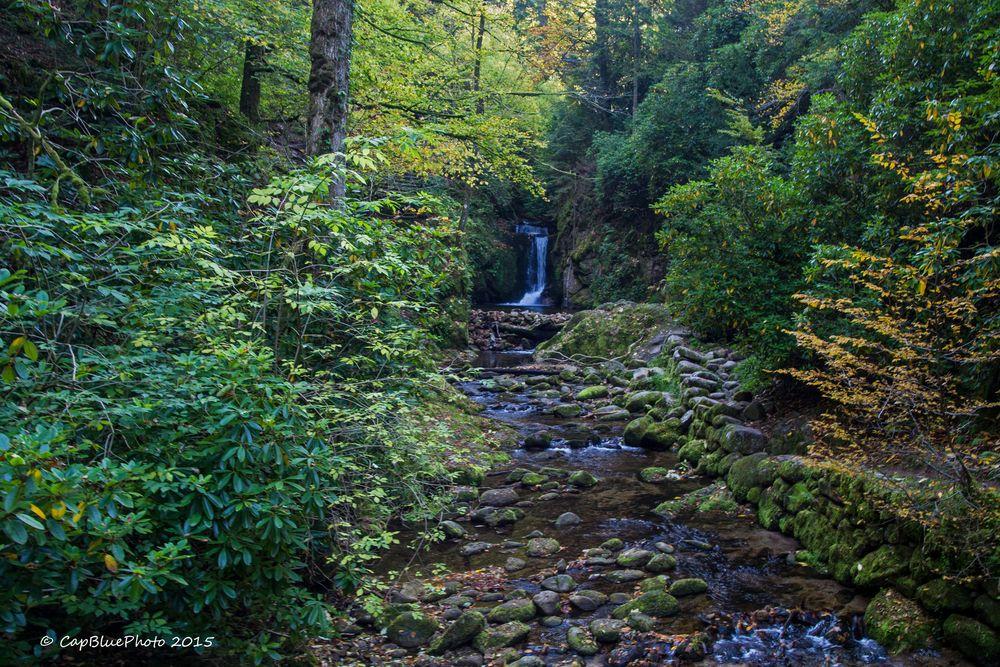 Gerolsauer Wasserfall eingerahmt vom Wald