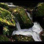 Gertelbach-Wasserfall 6