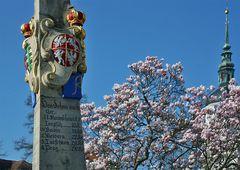 Geschichte und Frühling, ob das wohl zusammen passen mag ?