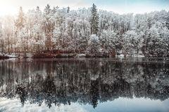 gespiegelte Winterruhe