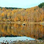 Gespiegelter Herbst